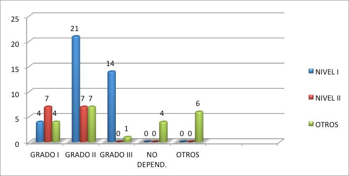 grado y nivel dependencia 2014